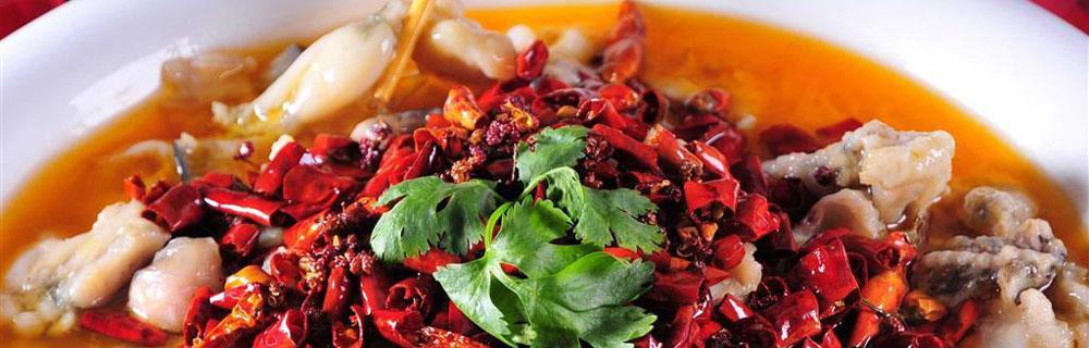 Startseite   Sichuan Küche Restaurant München
